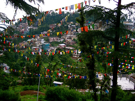 Tibetan Prayer Flags An Environmental Hazard?