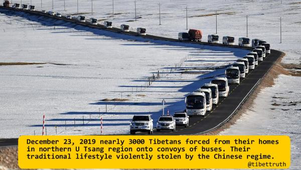 Tibetan Herders Forced Into Life Of Dependency And Misery In Southern Tibet